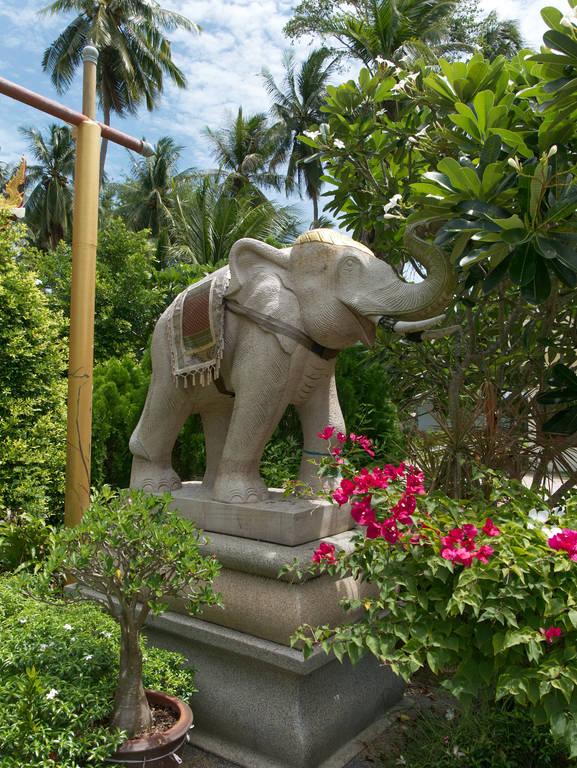 Wat-Khiri-Wongkaram-Tempel-Elefant-Statue