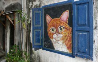 Street-Art-Tour-George-Town-Katze-Beitragsbild