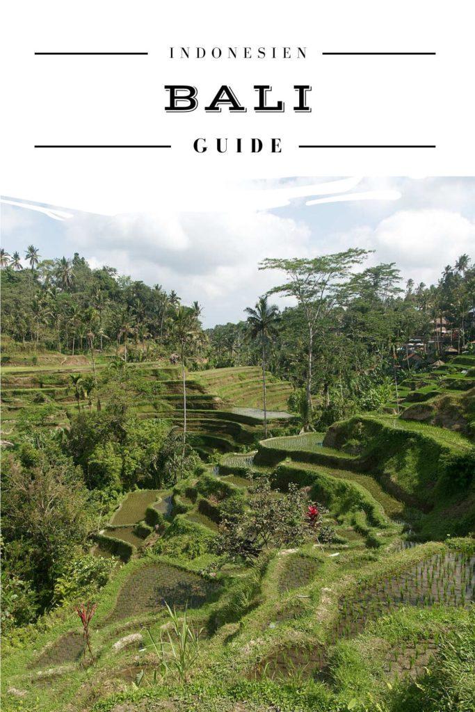 Bali Reise Guide - Pinterest Pin