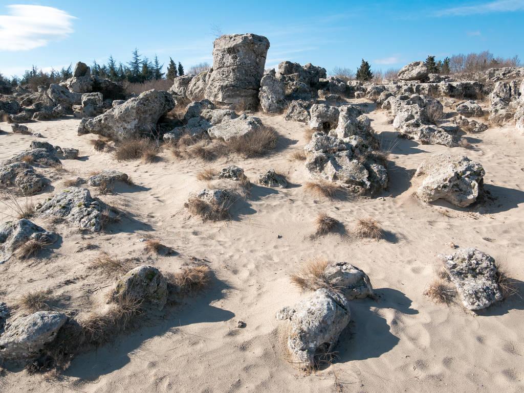 Stone Forest - Pobiti Kamani