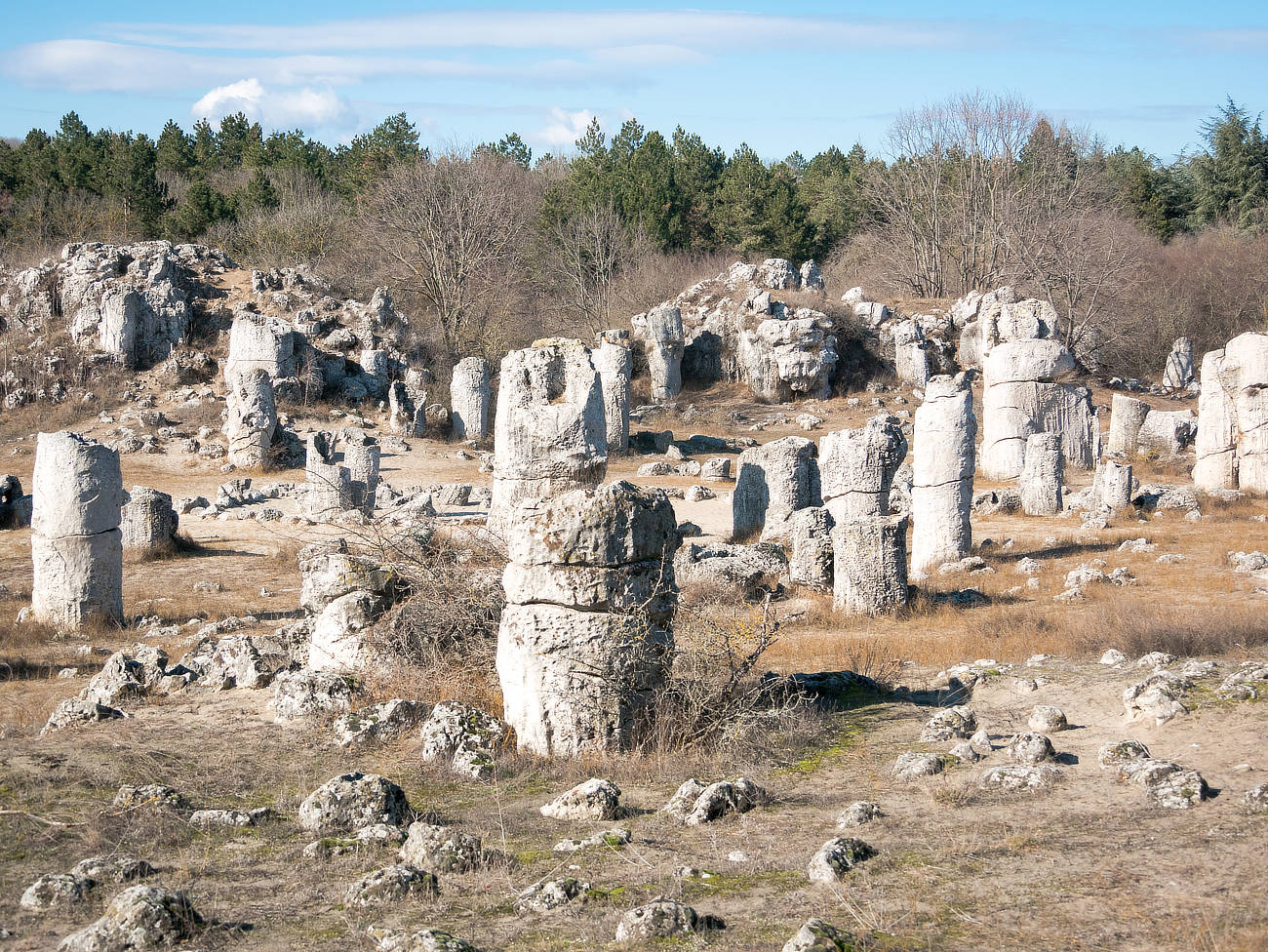 Stone Forest - Steinformationen