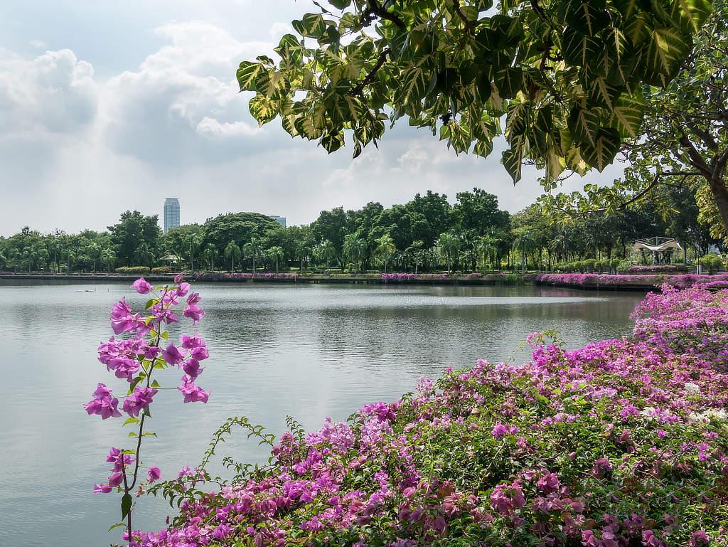 Benjakitti Park Bangkok