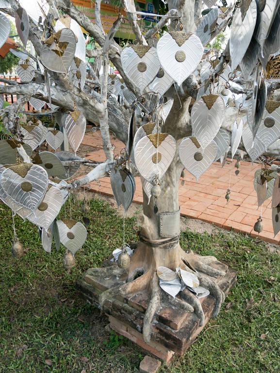 Wat Lok Molee - Baum mit Herzen