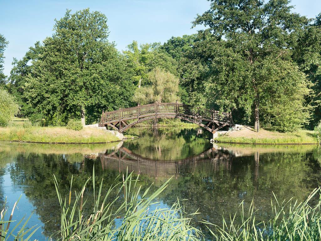 Teich mit Brücke im Johannapark