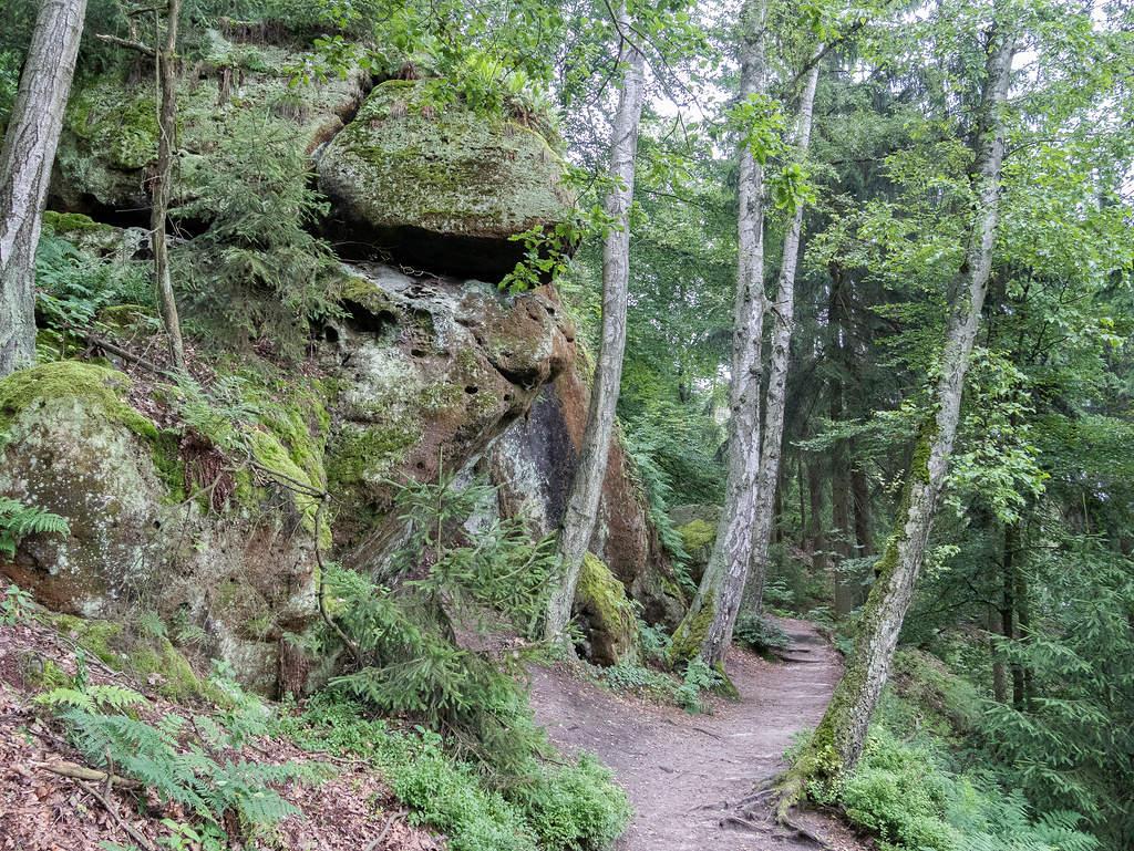 Nordaufstieg auf den Lilienstein