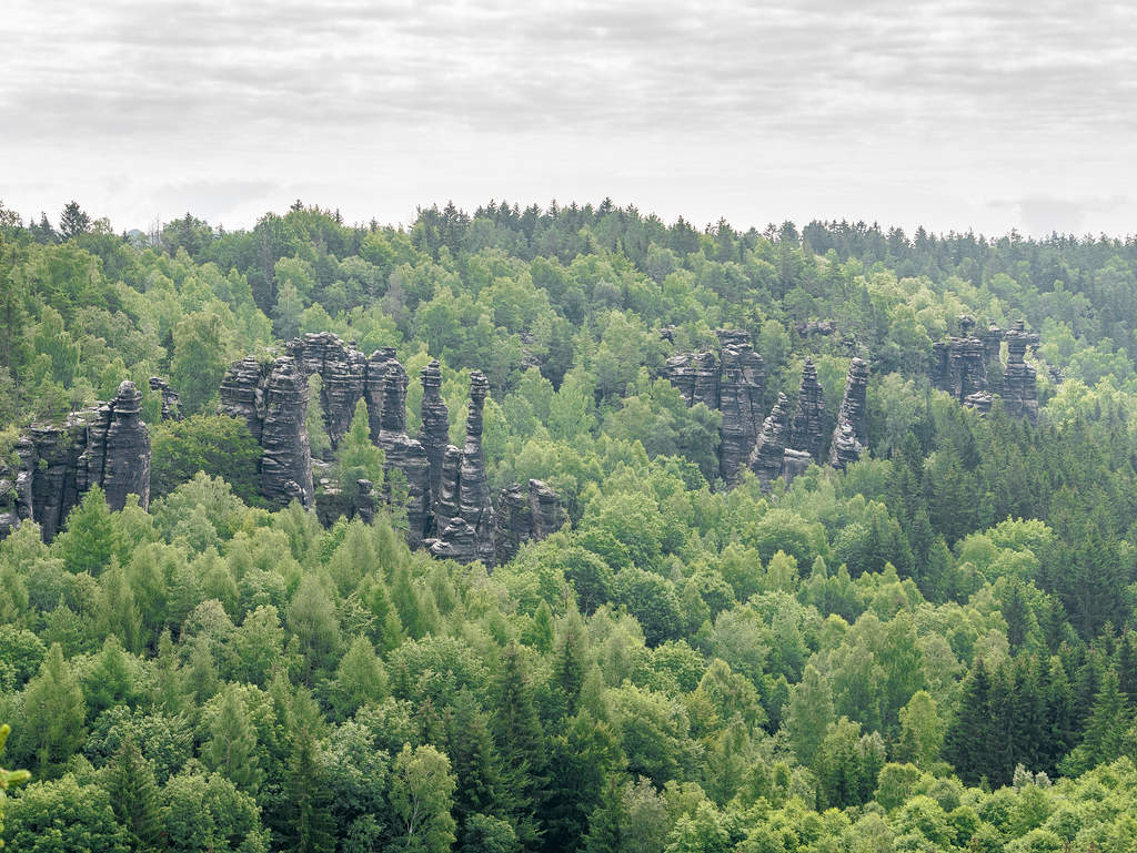 Aussicht vom Sachsenstein