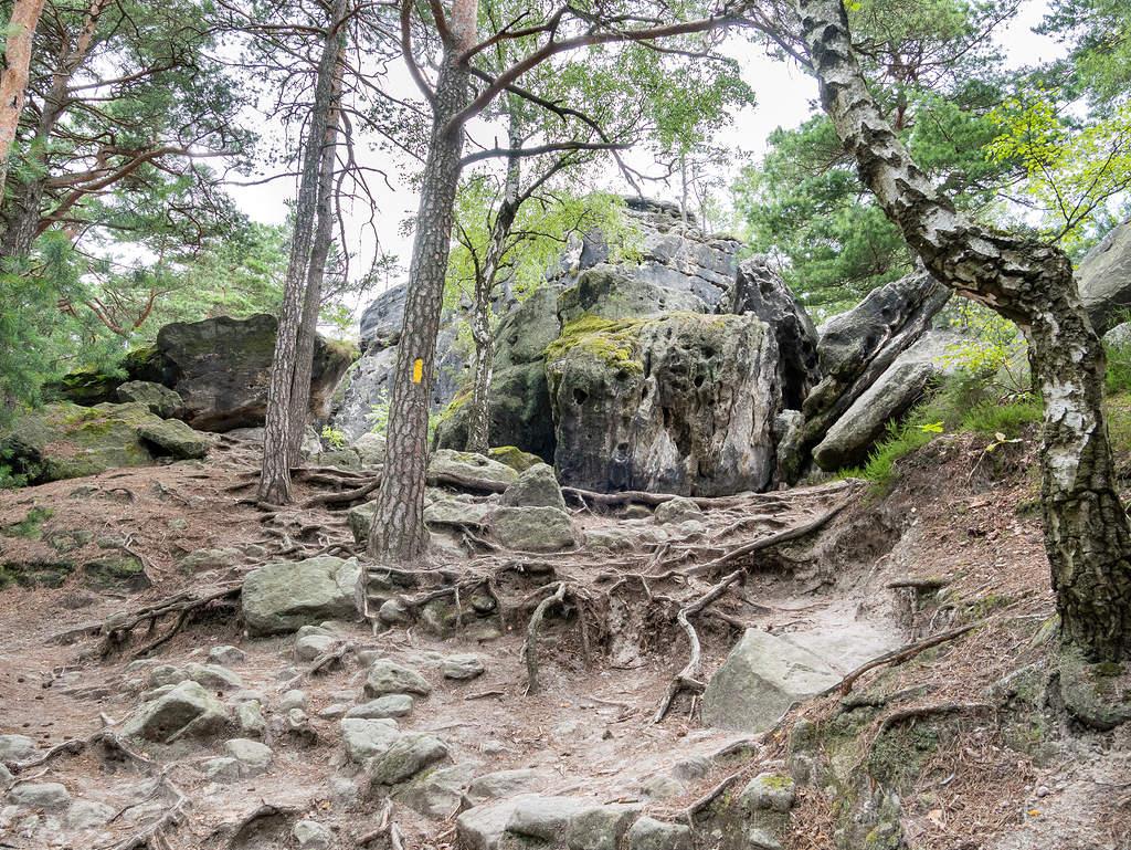 Aufstieg über Forststeig